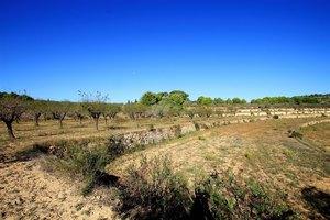 Plot for sale in Benissa
