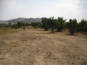 Plot for sale in Alhaurin el Grande