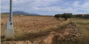 Plot for sale in Jumilla