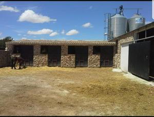 Commercial for sale in Yecla