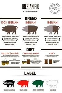 Large_pig_chart_medium