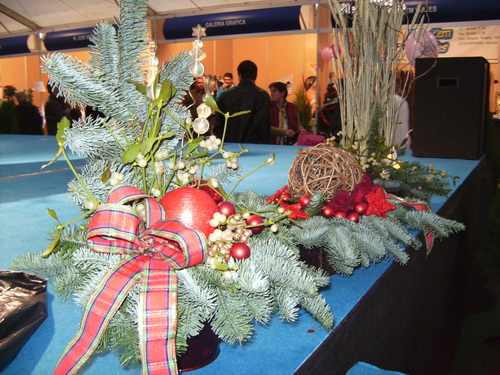 Christmas Floral Displays