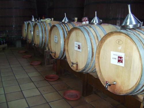 Jalon valley bodega