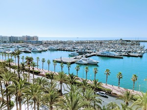 6 bedroom Penthouse for sale in Alicante