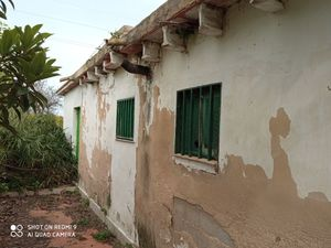 1 bedroom Plot for sale in Oliva
