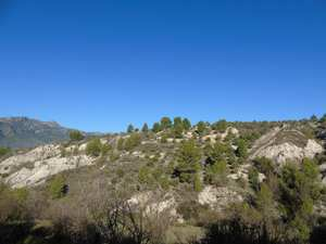 Finca for sale in Cocentaina