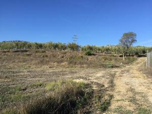 Plot for sale in Muro de Alcoy