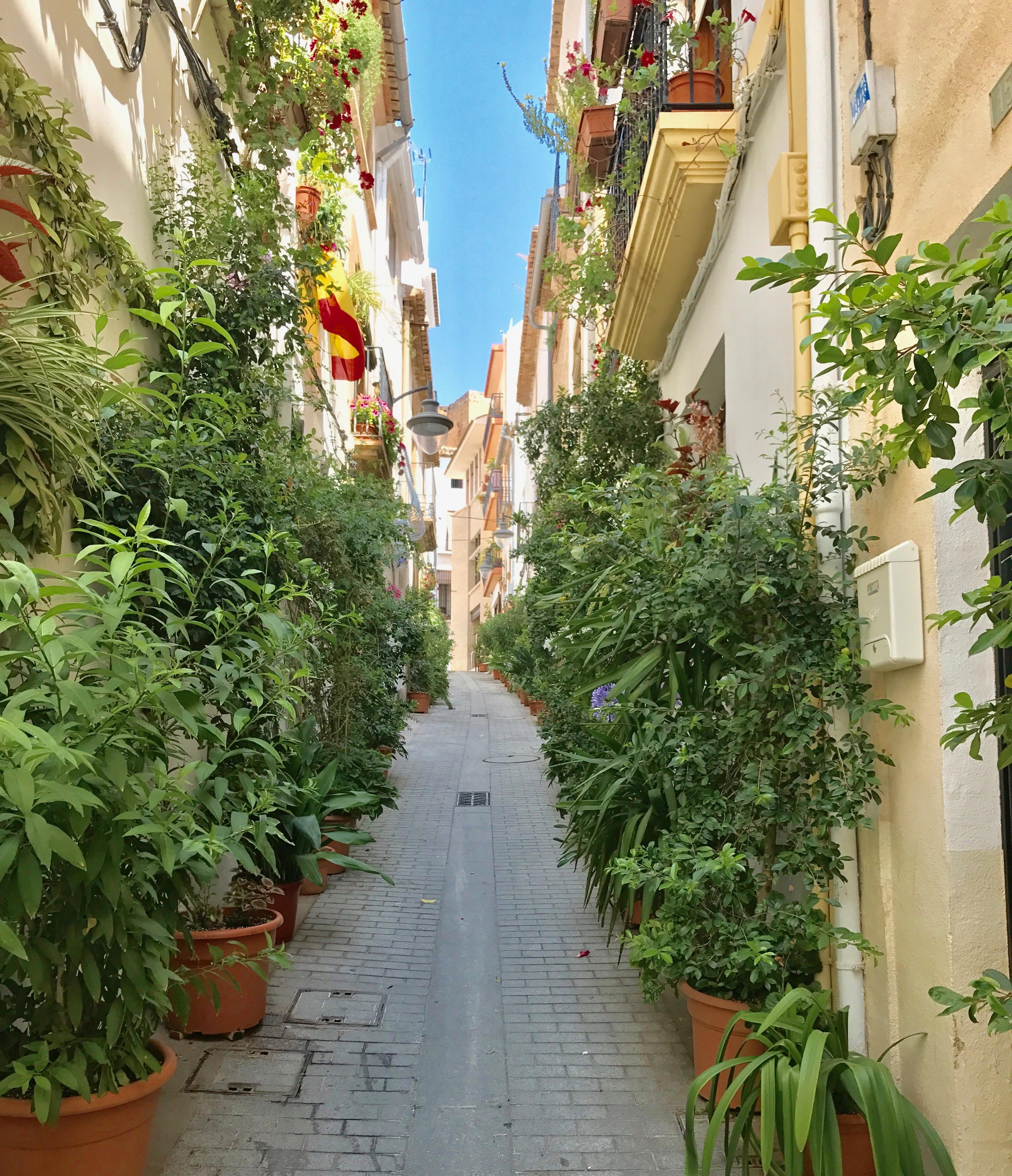 Lavea old ton streets