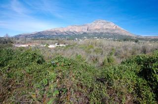 terrains à bâtir à vendre javea