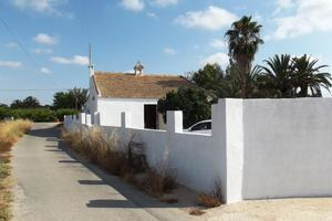 Fabulous 4 bedroom finca near Elche