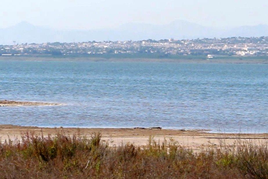 Torrevijeja salt lake