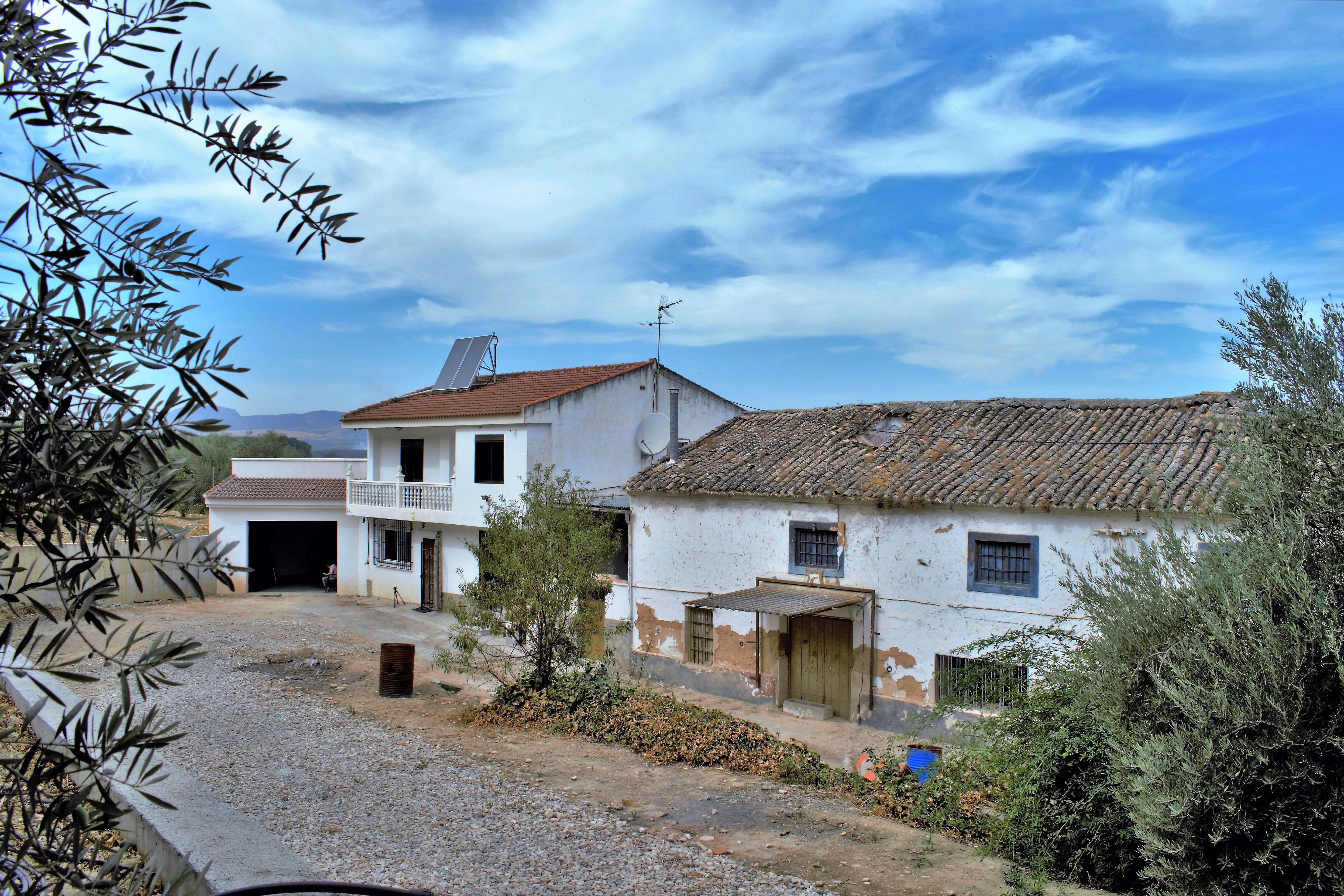 4 bedroom Finca for sale in Loja