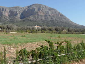 Javea Montgo Valls Building Plot for Sale